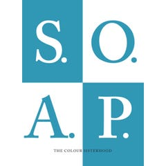 The Little S.O.A.P. Book